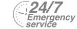 24/7 Emergency Service Pest Control in Mile End, Stepney, E1. Call Now! 020 8166 9746